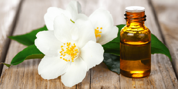 Knowing behind the fragrance: Jasmine Essential Oil