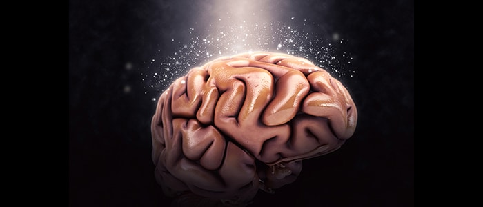 A Guide About Nootropics – How Smart Drugs Boost Your Brain's Health